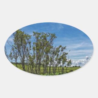 大きい草原の沼地の森林 楕円形シール
