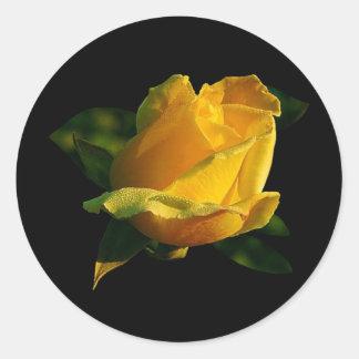 大きい黄色バラ ラウンドシール