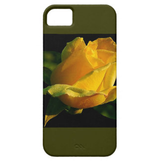 大きい黄色バラ iPhone SE/5/5s ケース