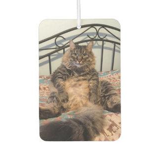 大きいHuggable猫車の芳香剤 カーエアーフレッシュナー