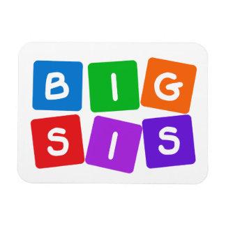 大きいSisの磁石 マグネット