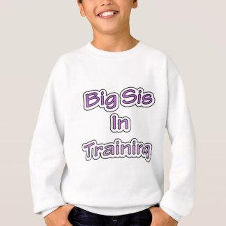 大きいSis スウェットシャツ