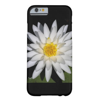 大きく幸運なはすの花のiPhone 6/6sの場合 Barely There iPhone 6 ケース