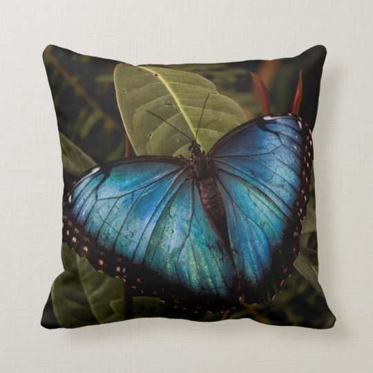 大きく、美しく、青い蝶 クッション