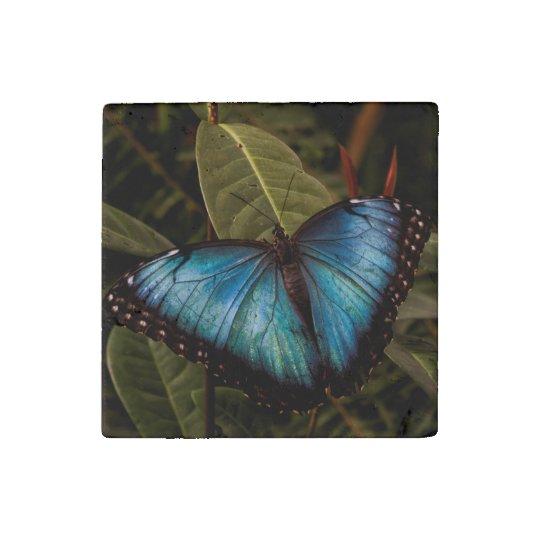 大きく、美しく、青い蝶 ストーンマグネット