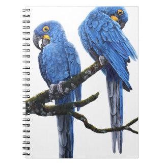 大きく、青いHyacinthのコンゴウインコ ノートブック