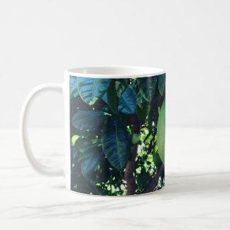 大きなみかん コーヒーマグカップ