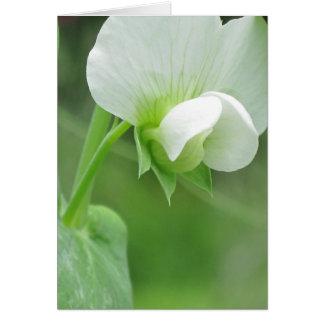 大事な行事のためのカスタムな花のテンプレートNoteCard カード