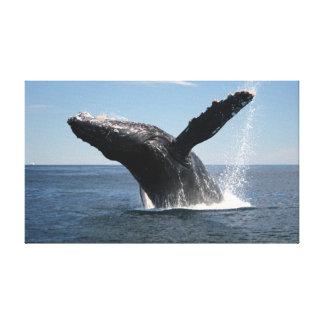大人にザトウクジラの破ること キャンバスプリント