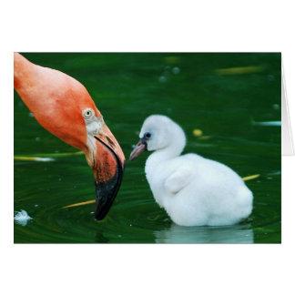 大人のフラミンゴおよびひよこの挨拶状 カード