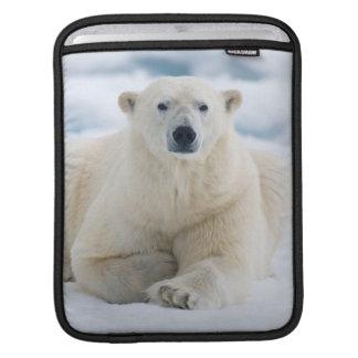 大人の北極は夏のパック氷に関係します iPadスリーブ