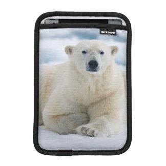 大人の北極は夏のパック氷に関係します iPad MINIスリーブ