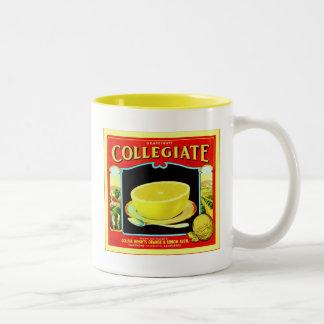大学のグレープフルーツの~のヴィンテージのフルーツの木枠のラベル ツートーンマグカップ
