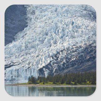 大学フィヨルドのWellesleyの氷河 スクエアシール