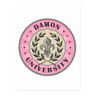 大学Damonのピンク ポストカード