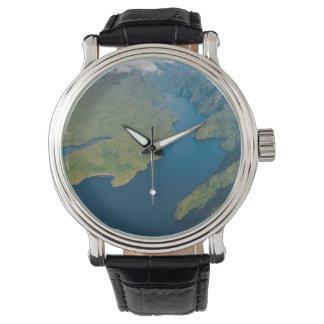 大熊座の雨林の沿岸景色 腕時計