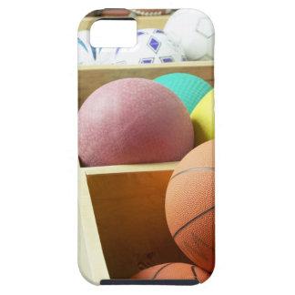 大箱で貯えられる球 iPhone SE/5/5s ケース