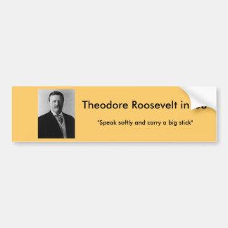 大統領のためのセオドア・ルーズベルト バンパーステッカー