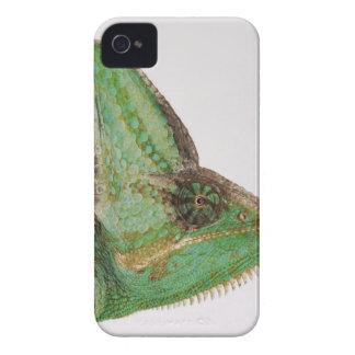 大胆にイエメンの着色されたカメレオンのポートレート Case-Mate iPhone 4 ケース