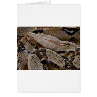 大蛇のヘビ カード