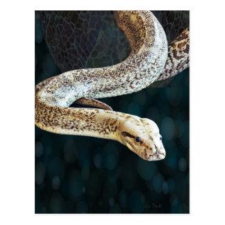 大蛇のヘビ ポストカード
