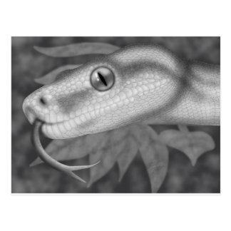 大蛇 ポストカード