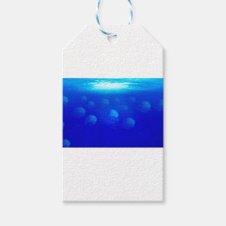 大西洋の水泳のグループの青いくらげ ギフトタグ