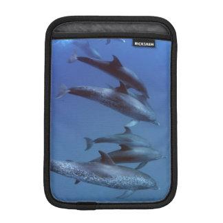 大西洋はイルカに斑点を付けました。 Bimini、バハマ iPad Miniスリーブ