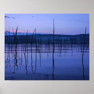 大雨の後の落ち着いた、霧深い湖 ポスター