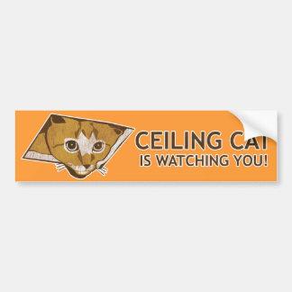 天井猫は見ています! バンパーステッカー