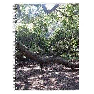 天使のオークの木の肢 ノートブック
