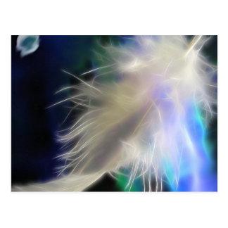 天使の羽、郵便はがき ポストカード