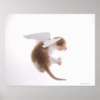 天使の翼を持つ子ネコは背部、後部に付しました ポスター