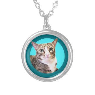 天使猫 シルバープレートネックレス