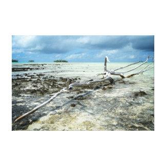 太平洋のキャンバスのプリントの死んだ木 キャンバスプリント