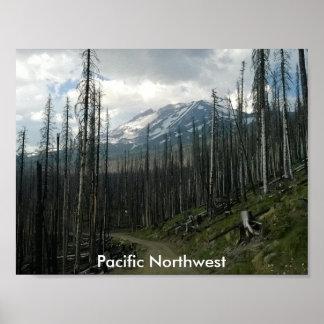 太平洋の北西の背部道の美しい ポスター