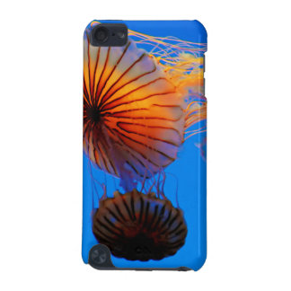 太平洋の海のイラクサ(Chrysaora Fuscescens) iPod Touch 5G ケース