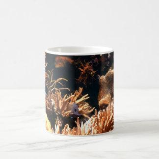 太平洋の珊瑚礁のマグ コーヒーマグカップ