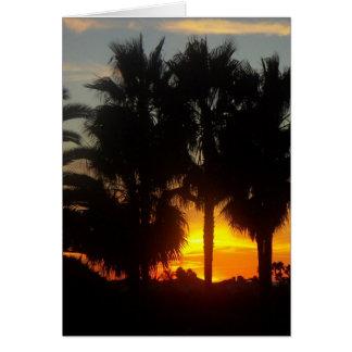 太平洋沿岸の日没 カード