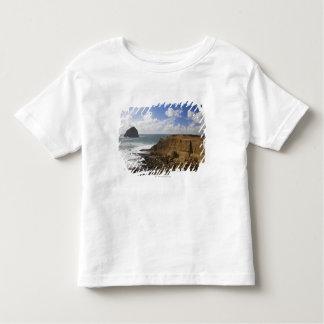 太平洋都市のオレゴンの岩が多い太平洋沿岸 トドラーTシャツ