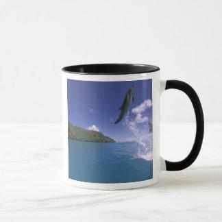 太平洋、ミクロネシア、パラオ諸島のBottlenose 2 マグカップ