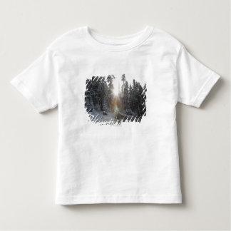 太陽に入るSnowyの砂利道 トドラーTシャツ