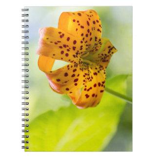太陽に照らされたオニユリおよび葉のノート ノートブック