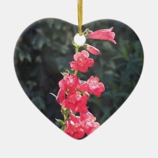 太陽に照らされたピンクのペンステモンの花のハッピーバースデーのハート セラミックオーナメント