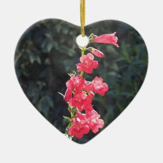 太陽に照らされたピンクのペンステモンの花の親友のハート セラミックオーナメント