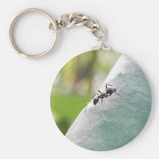 太陽に照らされた黒い蟻 キーホルダー