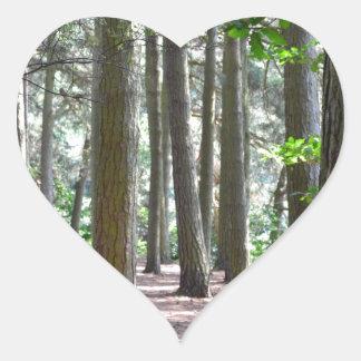 太陽に照らされた|森林|床 ハート形シールステッカー