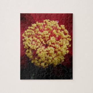 太陽の美しい花 ジグソーパズル