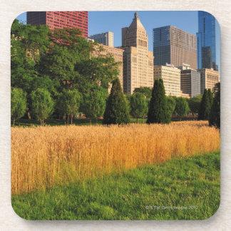 太陽、草原を離れたrefelctsは草を好みます コースター