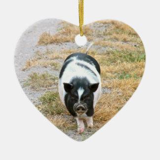 太鼓腹のブタ|のかわいい家畜の写真 セラミックオーナメント